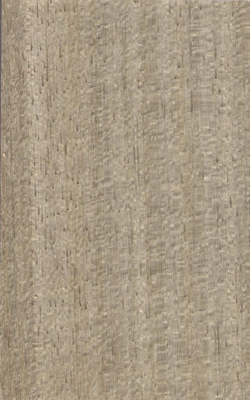 东非尼斯木HR6.01713