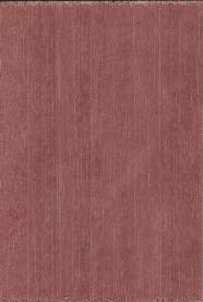 鲍迪豆HR6.0632