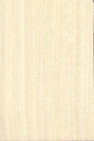 白枫K201