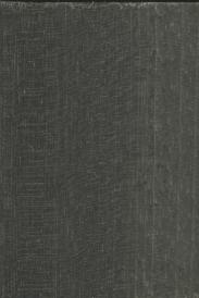 鲍迪豆HR6.0634