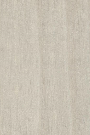 白胡桃HR6.0640