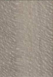 豆蔻尼斯HR6.0493